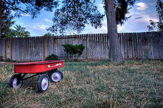 Radio Flyer in the back yard. Strobist Info: Just the sun.